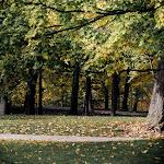Fall in MI, 09 (98 of 122)dng.jpg