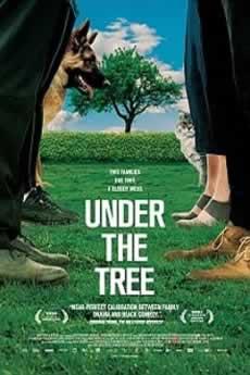 Baixar Filme A Sombra da Árvore (2019) Dublado Torrent Grátis