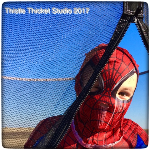 Thistle Thicket Studio, super heroes, spiderman