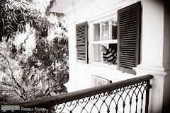 Foto 0275pb. Marcadores: 27/11/2010, Casamento Valeria e Leonardo, Rio de Janeiro