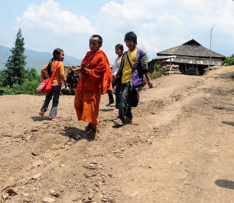 Chine: randonnée xishangbanna, région de Bada - Picture1%2B1010.jpg