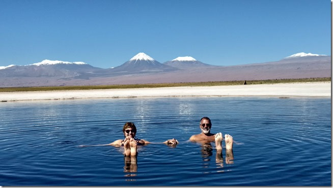 Laguna-Cejar-Atacama