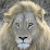 Kruger National Park's profile photo