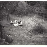 n026-030-1968-tabor-szigliget.jpg