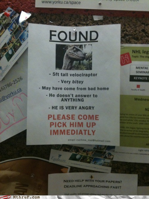 photo of a lost raptor poster