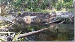 River blocked-1