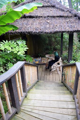 Dormir avec les tigres blancs du zoo de la Flèche, au Safari Lodge