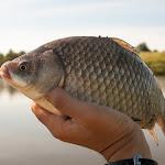 20160612_Fishing_Pryvitiv_061.jpg