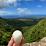 Siyu Sun's profile photo