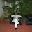 Kalee Syed's profile photo