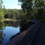 Walking alongside the Lane Cove River (383663)