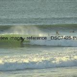 _DSC7425.thumb.jpg