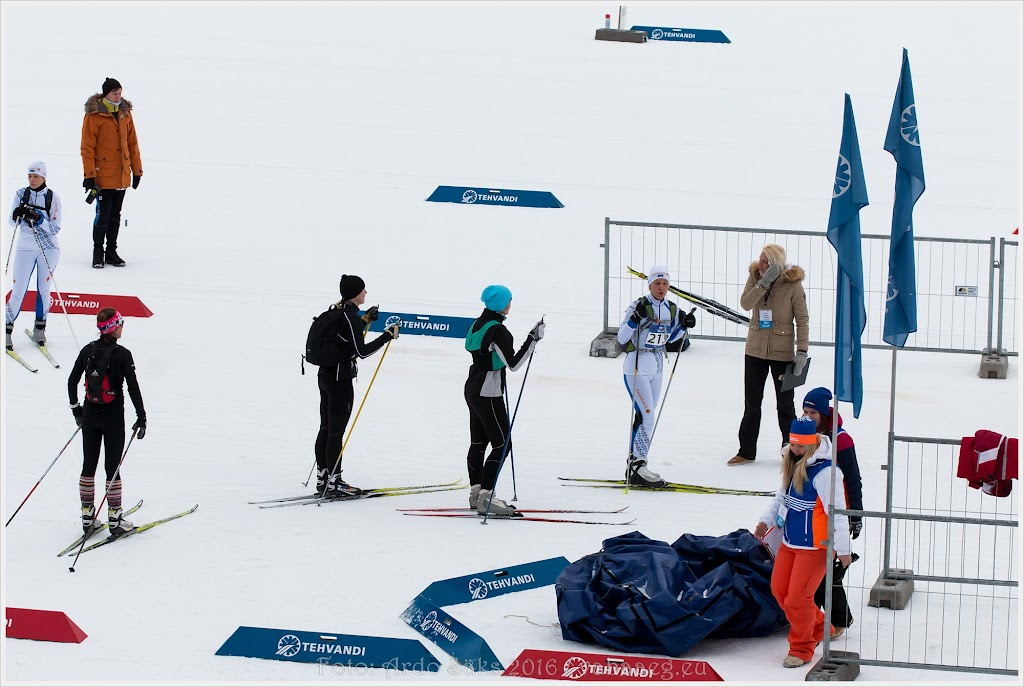 Talispartakiaad 2016 / foto: Ardo Säks