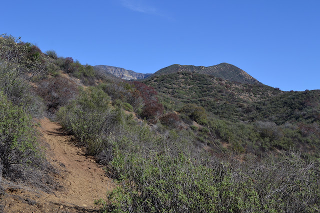 Topatopa Bluff