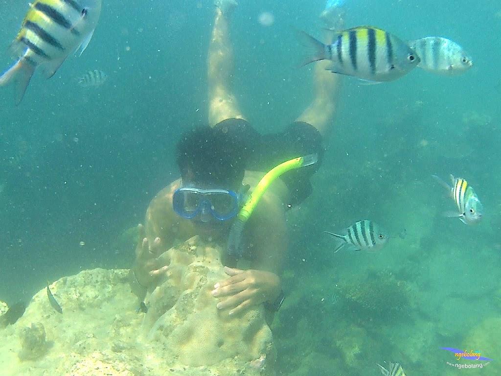 pulau harapan, 5-6 september 2015 skc 045