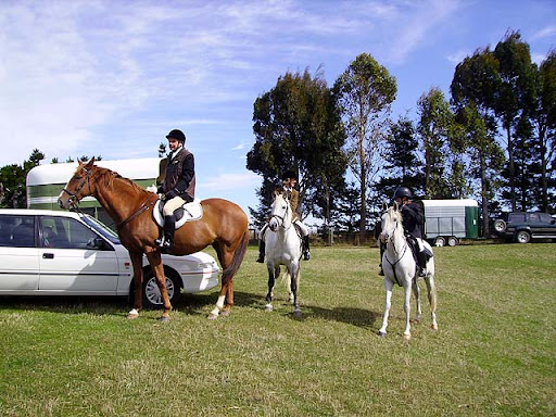 Oliver ( Shannon) Cheryl ( Snow) Freya (Jazz) before Opening hunt at Hindon