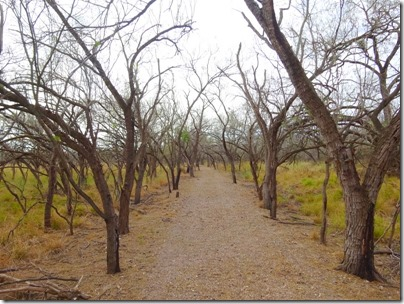 Bentsen-Rio Grande Valley Birding Center