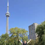 Toronto's famous waterfront, great for a weekend jog in Toronto, Ontario, Canada
