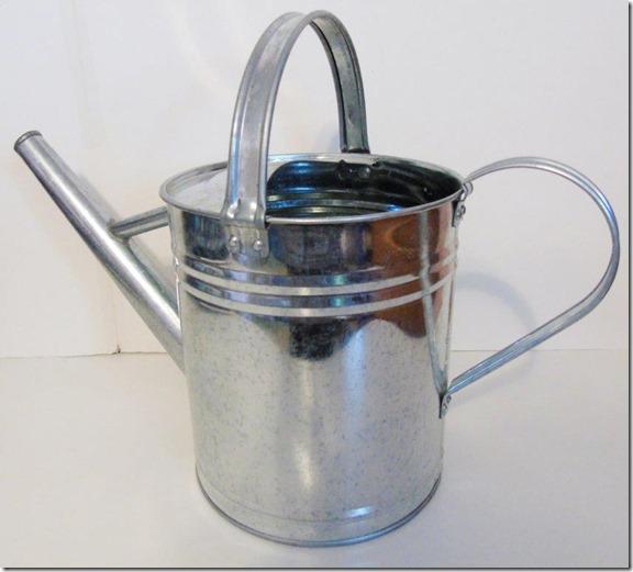 wateringcan01sm