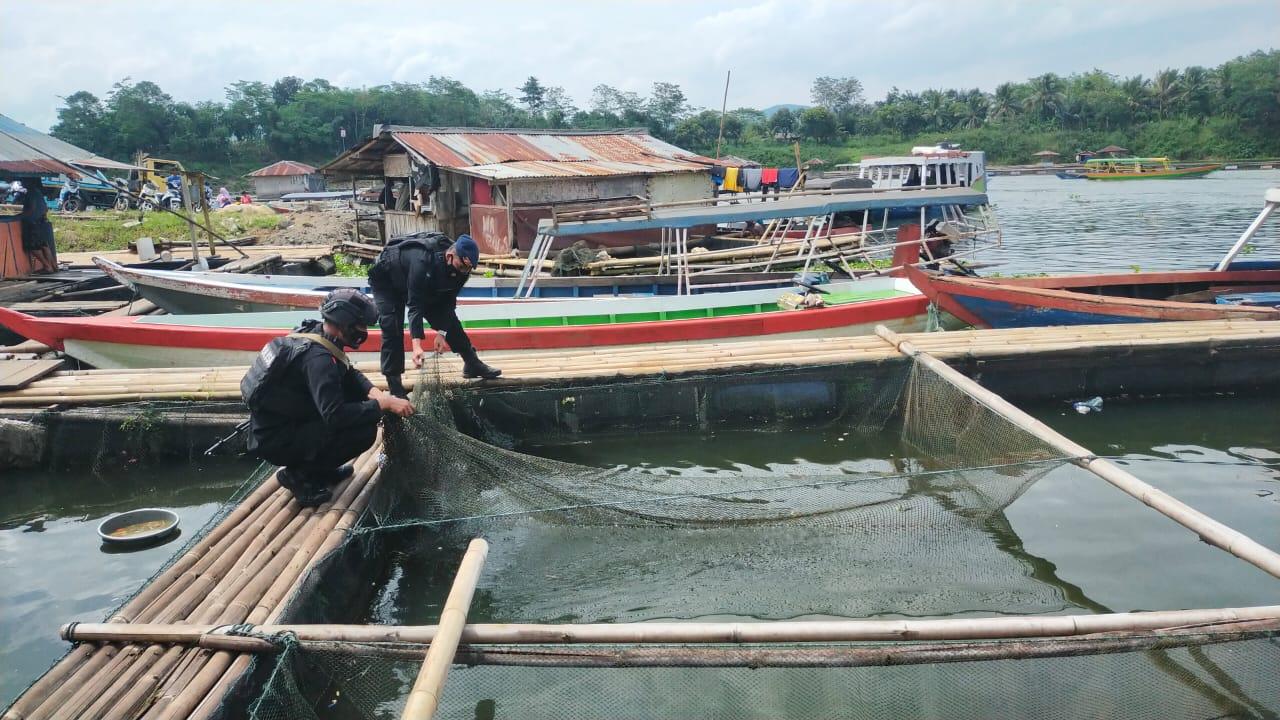 Jaga Kestabilan Pangan, Sat Brimob Polda Jabar Gandeng Masyarakat Budidaya Ikan Air Tawar