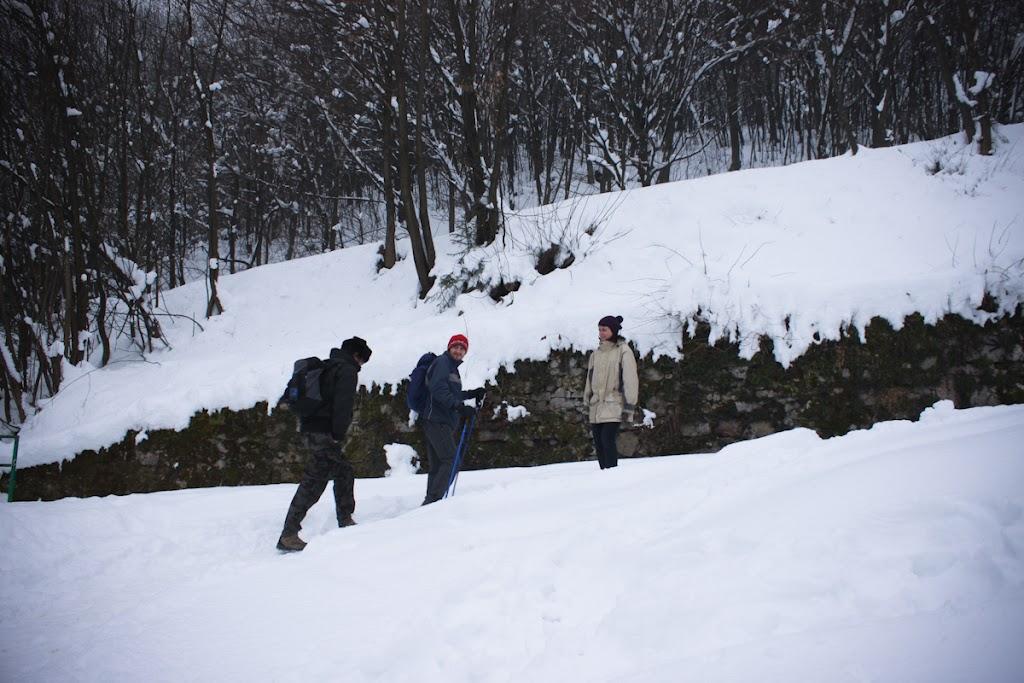 Winter Lubnik - Vika-0591.jpg