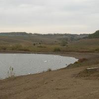 3 Ставок у долині річки Липчик 2.JPG