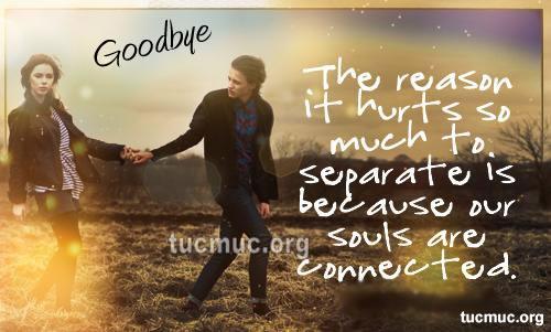 Goodbye Images
