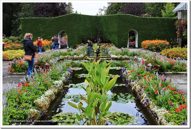 160906_Butchart_Gardens_0154