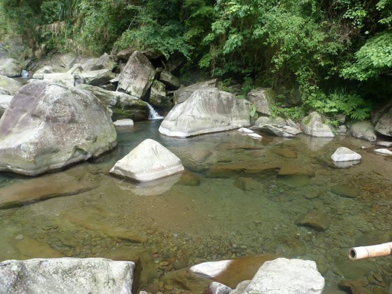 Petite randonnée au sud de Taufen, dans la région de Miaoli - P1330602.JPG