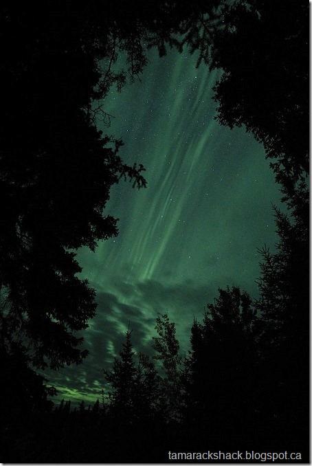 aurora2 (2)