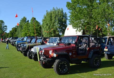 Jeeps of all shapes and sizes