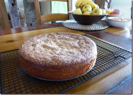 Spanish almond cake4