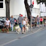 On Tour in Bayreuth: 7. Juli 2015 - Bayreuth%2B%252822%2529.jpg