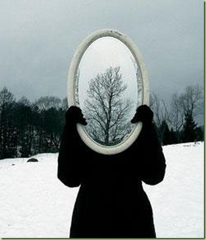funny-mirror-tree-optical-illusion