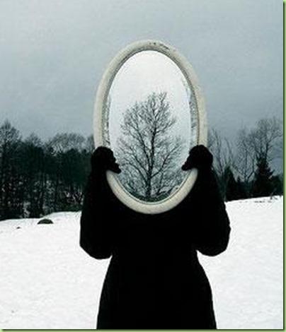 funny-mirror-tree-optical-illusion