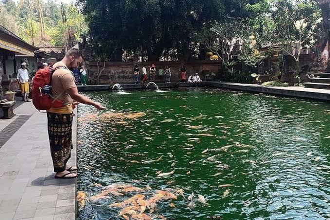 kolam ikan Pura Tirta Empul