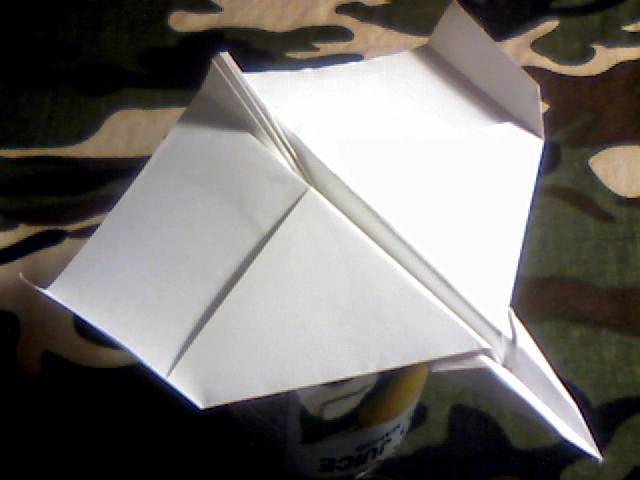 Wing 44