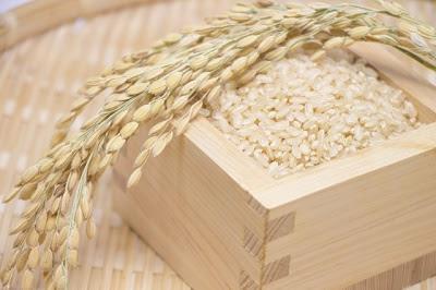玄米イメージ画像400×266.jpg