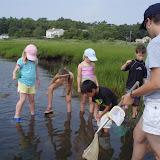 2011 Life Along the Shore - LAS%2B2011%2B010.jpg