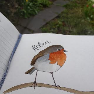 Robin :: www.AliceDrawsTheLine.co.uk