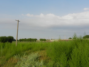 Photo: You can see the railroad in the distance.