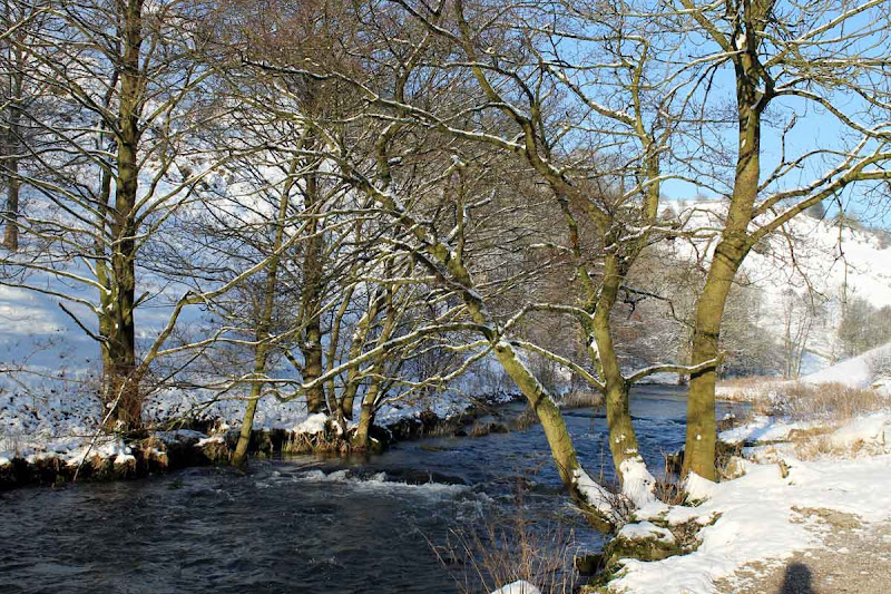 Winter-2013-p
