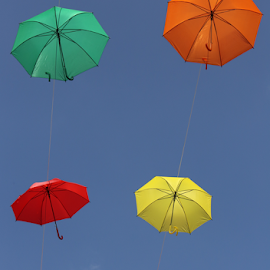by Felice Bellini - Artistic Objects Still Life ( umbrella, air, colors )