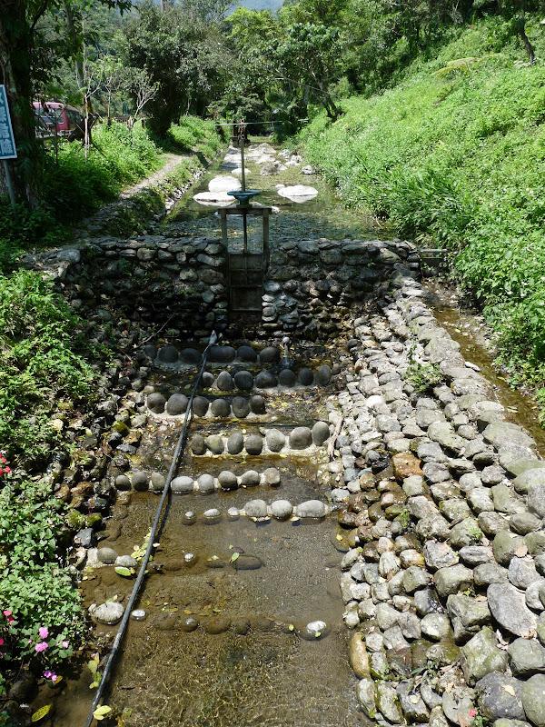 TAIWAN .Hualien 2009 LIYU lake Monet garden guest house - P1090614.JPG