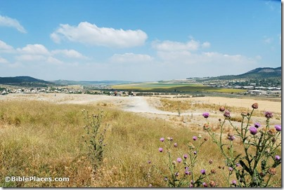 Sorek Valley from Beth Shemesh view west, tb052405993