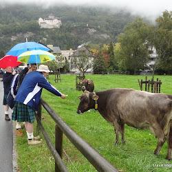 Tartan Army, Liechtenstein