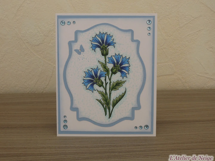 014 - Bleuets