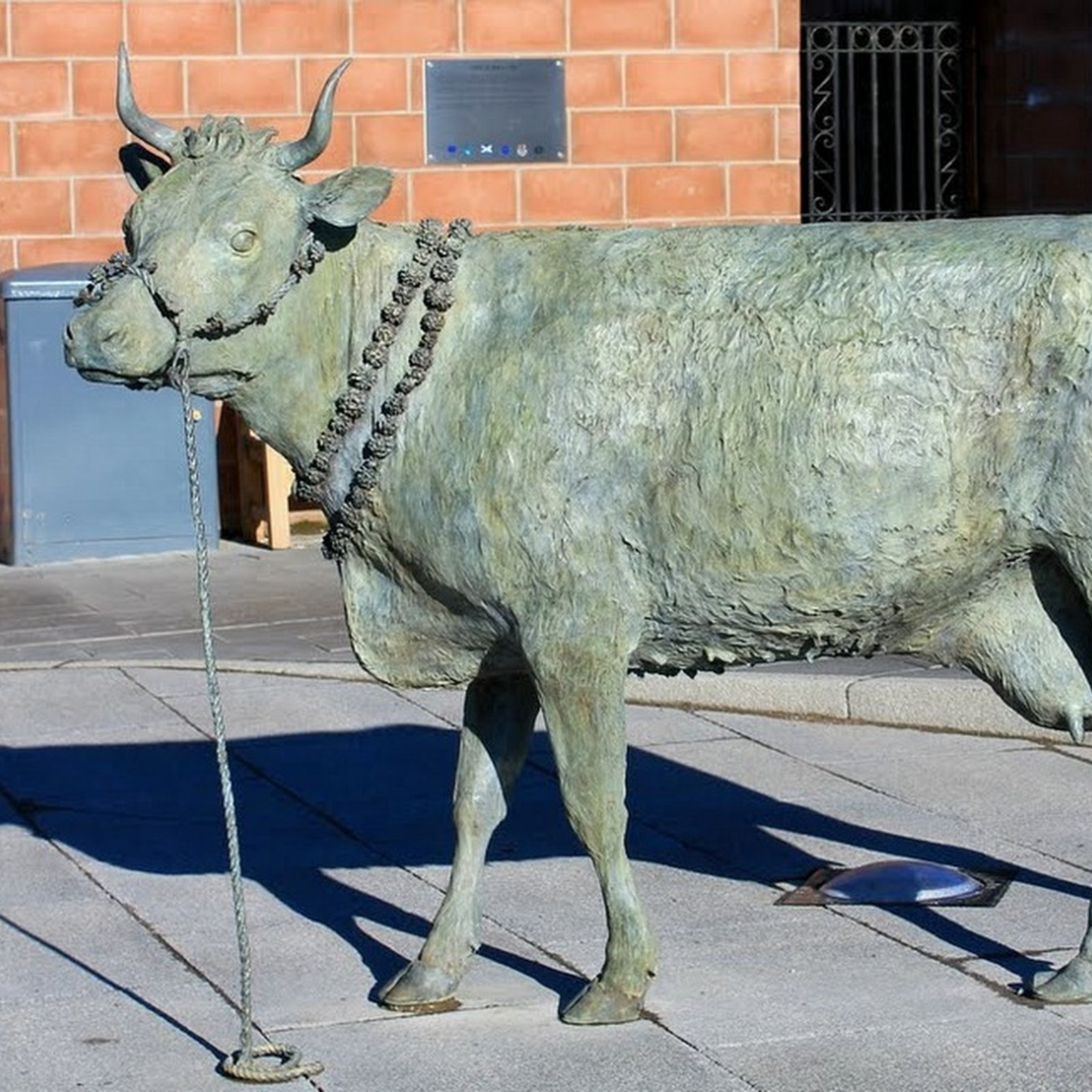 Tura Coo: The Cow That Led A Town To Riots