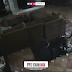 😨😨😨 Cachorro tem coleira retirada 'misteriosamente', e dona acredita ser fantasma