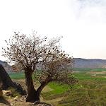 Iran Edits (726 of 1090).jpg